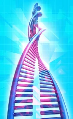 The 5-HTT Gene